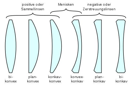Linsenarten